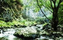 Ciucaș Waterfall
