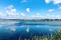 Ria de Aveiro / Aveiro Lagoon
