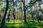 Salantai Regional Park
