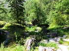 Alpine Botanical Garden Juliana, Slovenia