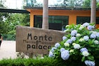Monte Palace