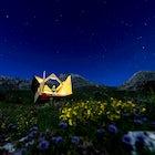 Signal Starsbox, Piedmont