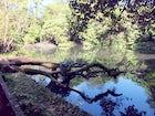 Burle Marx Park