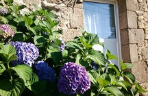 "Chambre d'hôtes bretonne: ""TY LOAR GLAZ"""