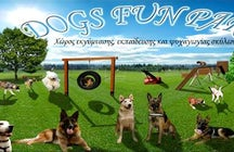 DOGS FUN PARK