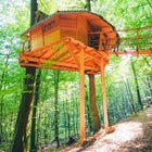Treehouse, Trenčianske Teplice