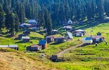 Bakhmaro Resort
