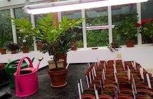 Grasagardur Botanical Garden