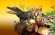 Visit Zoa Parc Animalier Et Exotique