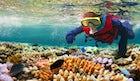 Speak your language underwater with Atlantis divers in Halkidiki