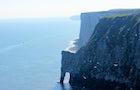 Bird watching at Bempton cliffs, highest in England