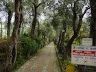 Garden of Villa Comunale, Taormina