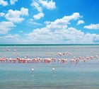 Area marina protettata Penisola del Sinis