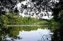 Meißendorf Lakes