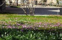 Jardin Botanique. Université de Fribourg