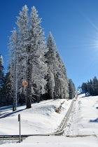 Alpyland park