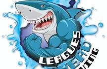 Leagues Ahead Diving
