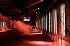 Nuits Fauves: Nightclub
