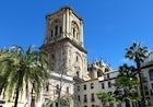 Granada's Cathedral