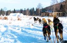 Listvyanka Dog Sledding, Lake Baikal