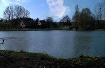 Etang de Lachambre - 57730