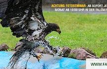 Falknerei Zoo Kaiserslautern