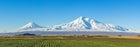 Arart Plain