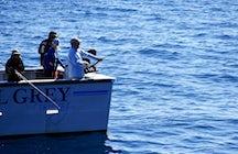 Polar fishing Tromsø