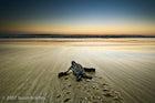 Grande Beach (Playa Grande), Guanacaste, Costa Rica