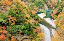 Sumatakyo, Shizuoka