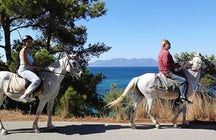 Horse riding on Aegina