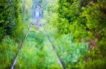 Tunnel of Love, Obreja