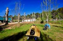 Camping Chopera