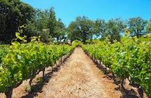 The Nemean Wine tour