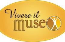 Vivere il Museo