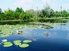 Lake Tisza, Észak-Alföld