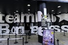 TeamLab Borderless, Odaiba, Tokyo