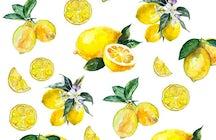 """Траттория """"Лимоны жёлтые"""""""