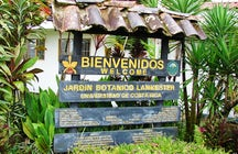Lankester Botanical Garden, Cartago