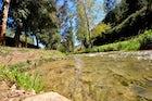 Tuéjar River
