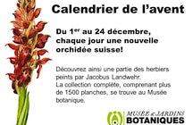 Musée et Jardins botaniques cantonaux Lausanne Pont-de-Nant