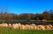 Parc des Gayeulles of Rennes