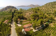 XeniCamp & Bungalows - Agrotourism Holiday Village