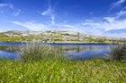 Parco Nazionale dell'Isola dell'Asinara
