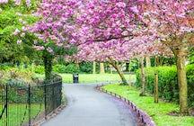 Saint Stephen's Green park in Dublin