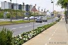 Estrada Monumental