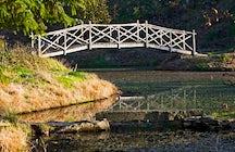 Burgie Woodland Garden/Arboretum