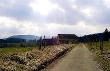 Conriéry high pasture