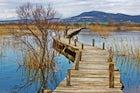 Ornithological reserve Vransko Lake