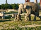 İzmir Natural Life Park